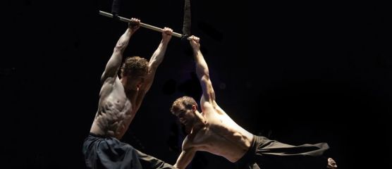 © Andy Phillipson